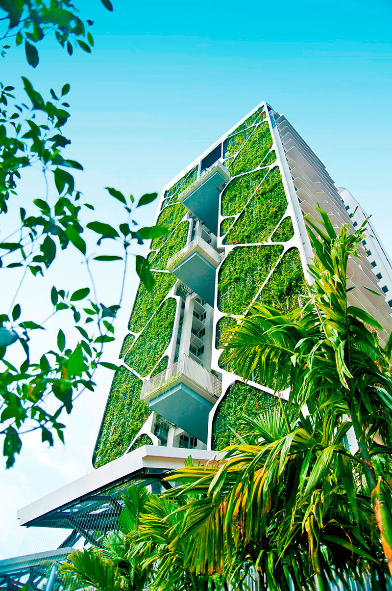 Tree House condominium by CDL achieved a Guinness World Record for its large vertical garden