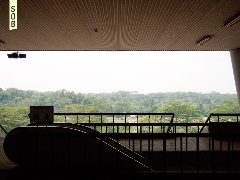 View towards MacRitchie from the old Bukit Timah Turf Club