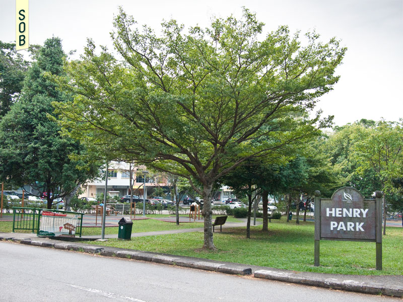 Henry Park Apartments circumscribing Henry Park
