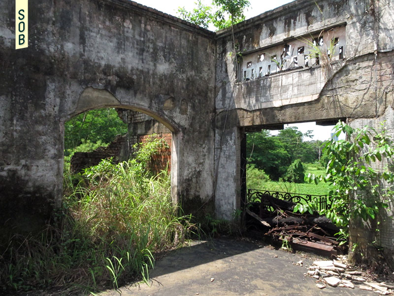 Overgrown ruins on the second floor of Istana Woodneuk Singapore